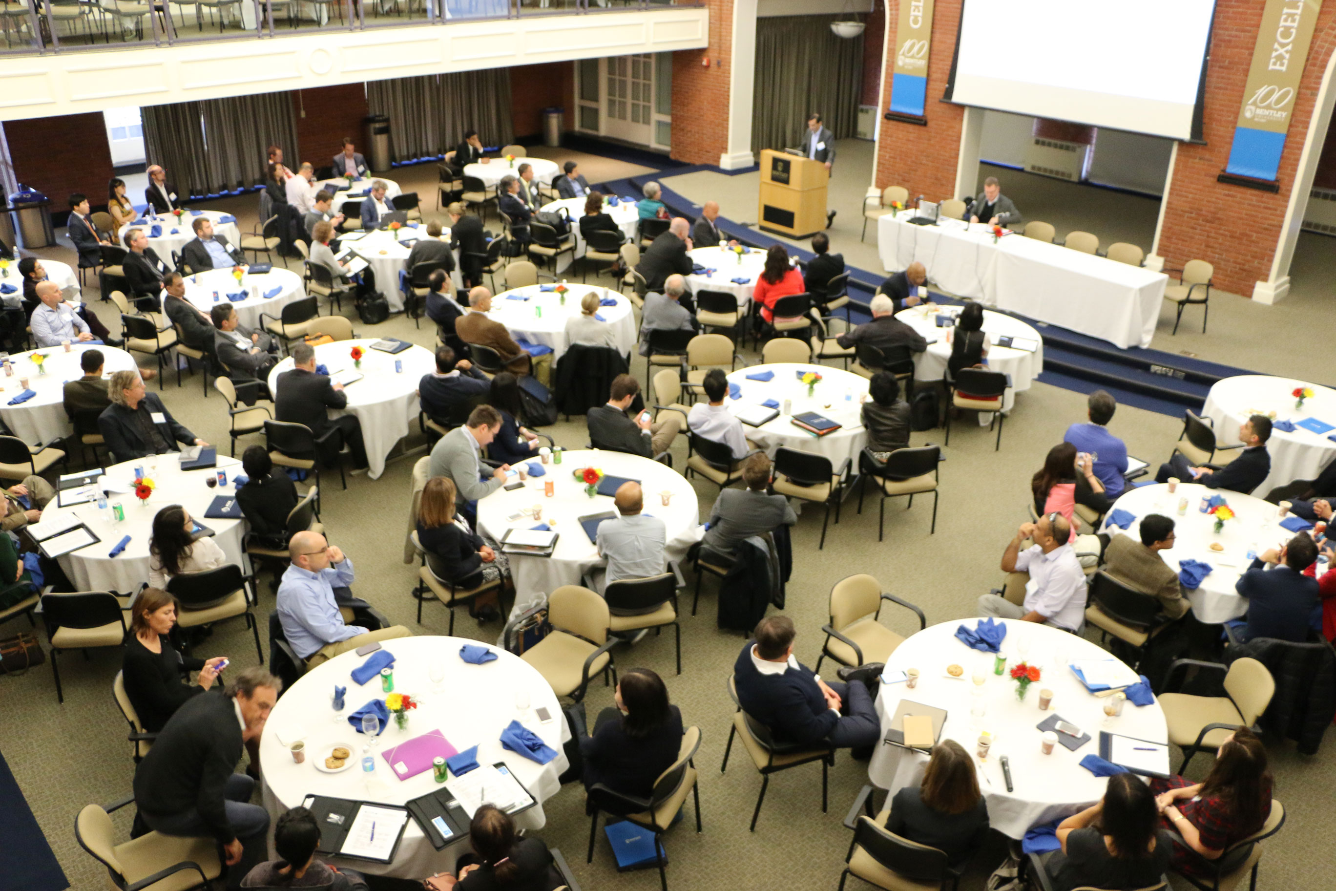 Bird's eye view of ICGS General Meeting